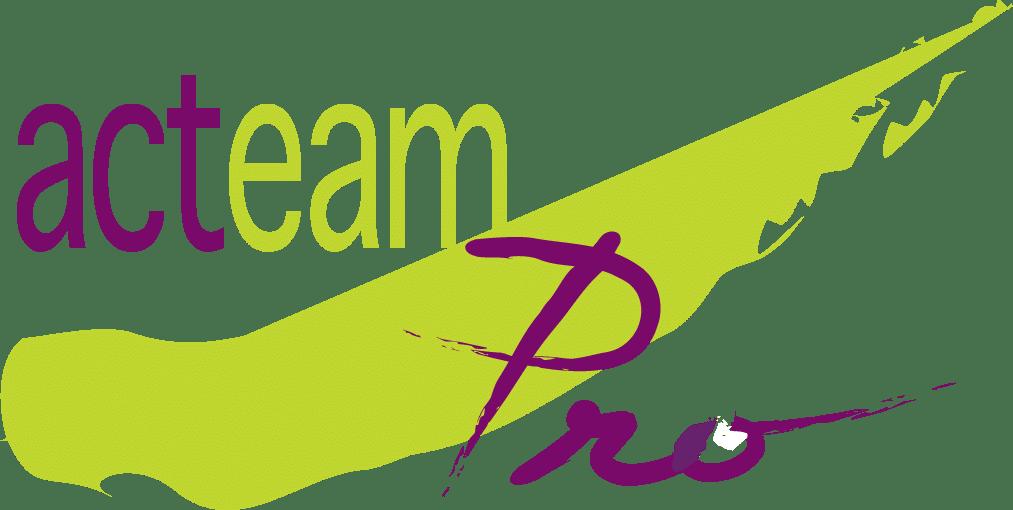 Cabinet conseil Acteam Pro
